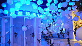 2010 FLORA EXPO:爭艷館16.jpg
