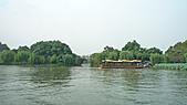 2010.杭州:杭州西湖-曲院風荷.jpg