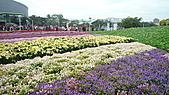 2010 FLORA EXPO PART 2:地景花海7.jpg