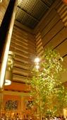 再訪 台北喜來登大飯店-請客樓:台北喜來登大飯店2.jpg