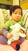 2010聖誕節:小薰的聖誕禮物-STEIFF 小羊3.jpg
