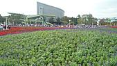 2010 FLORA EXPO PART 2:地景花海10.jpg
