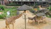 新竹關西六福莊生態度假旅館+六福村:新竹關西六福莊生態度假旅館6.JPG