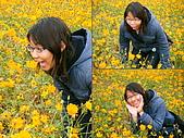 美濃花海2008.02.24:DSCF0703.JPG