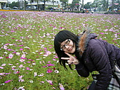 美濃花海2008.02.24:DSCF0726.JPG