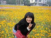 美濃花海2008.02.24:DSCF0699.JPG