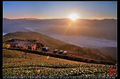 碧湖山茶園日出大雲海:DSC_6386.jpg
