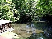北海道旅遊:名水公園 (9)
