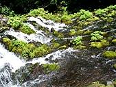 北海道旅遊:名水公園 (12)