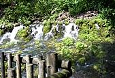 北海道旅遊:名水公園 (19)