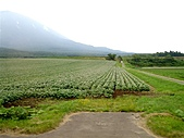 北海道旅遊:名水公園 (23)