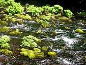 北海道旅遊:名水公園 (26)