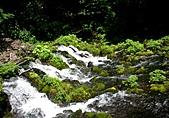 北海道旅遊:名水公園 (27)