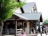 北海道旅遊:富良野 (19)