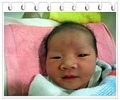 成長日記:2008/02/01 台南-海安路詠馨