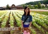 北海道旅遊:富良野 (25)
