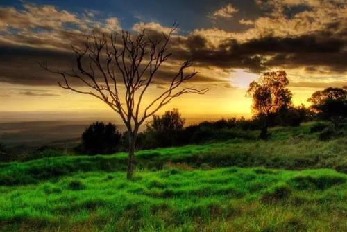 12.jpg - 願有一方田園,可以終老一生