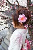 * 清水寺。祇園 *:DSC_0044_a_s.jpg