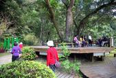 宜蘭棲蘭森林遊樂區:馬告生態公園棲蘭山莊 _小泰山步道 (2).JPG