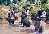 泰國清邁:015