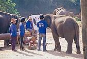 泰國清邁:017