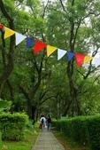 荒野台中20成年禮 :2017荒野20周年慶-112-蔡佳真.jpg