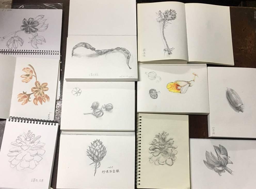 荒野台中20成年禮 :手繪-裁剪-種子.jpg