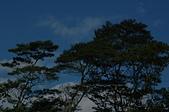 荒野台中20成年禮 :DSC_9443.JPG