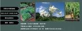 週週見宣傳照片:20210107駱明永百合 臉書封面DM.jpg