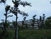20111219小黃早上的新莊副都市中心:201112190010小黃早上的新莊副都市中心.jpg