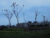 20111219小黃早上的新莊副都市中心:201112190015小黃早上的新莊副都市中心.jpg