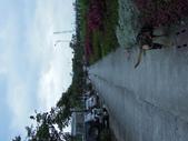 20111219小黃早上的新莊副都市中心:201112190016小黃早上的新莊副都市中心.jpg