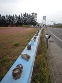 20121024菊島澎湖行之馬公湖西:1 418.jpg