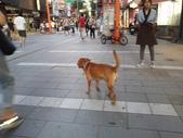 20120825與小黃在台北西區走走:20120825_175357.jpg