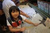 2013暑假屏東海生館:DSC03219.jpg