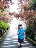太平山:20200827太平山_200830_44.jpg