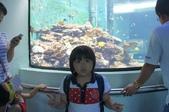 2013暑假屏東海生館:DSC03250.jpg