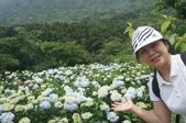 帶媽媽去看繡球花:DSC08690.JPG