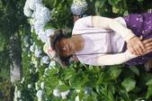 帶媽媽去看繡球花:DSC08694.JPG