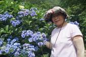 帶媽媽去看繡球花:DSC08682.JPG