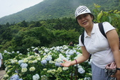 帶媽媽去看繡球花:DSC08688.JPG
