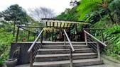 宜蘭礁溪抹茶山:65433.jpg
