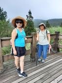 太平山:20200827太平山_200830_87.jpg