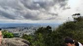 金面山:20200308金面山步道_200308_0054.jpg