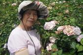 帶媽媽去看繡球花:DSC08684.JPG