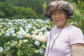 帶媽媽去看繡球花:DSC08685.JPG