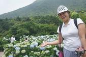 帶媽媽去看繡球花:DSC08687.JPG