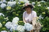 帶媽媽去看繡球花:DSC08691.JPG