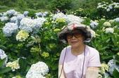 帶媽媽去看繡球花:DSC08692.JPG