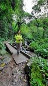 宜蘭礁溪抹茶山:65481.jpg